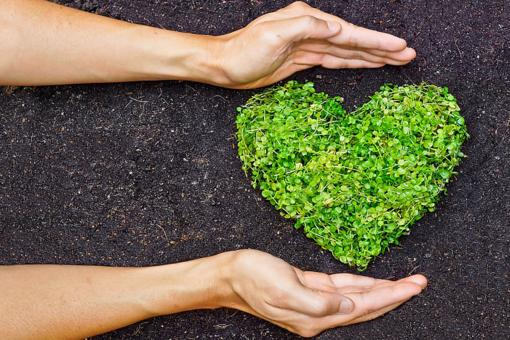 "Zero-Waste Valentine's Day: 7 Eco-Friendly Ways to Say ""I Love You"" Without the Waste!"
