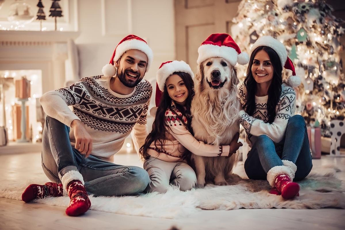 Your Pet Is Part Of The Family So Dont Forget To Let Him Be Christmas Photo Too
