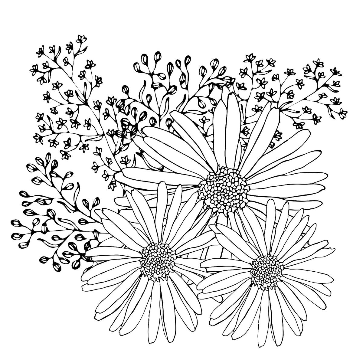 Spring Flower Coloring Page | Turtle Diary | 1200x1200
