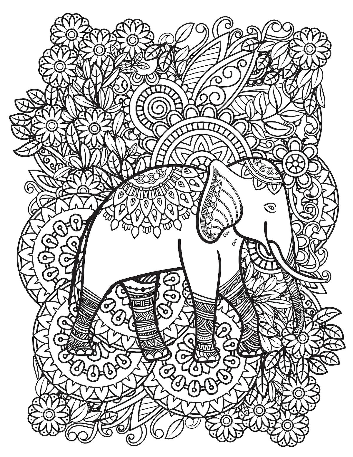 Elephant Coloring Pages 12 Free Fun Printable Elephant Coloring Pages For Kids Adults Printables 30seconds Mom