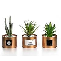 Artificial Plants With Inspirational Sayings (Set of 3)