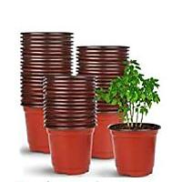 Augshy 110 Pcs 4-inch Plastic Plants Nursery Pot (Seed Starting Pots)