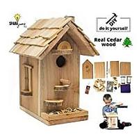 Birdhouse Craft Kit (Bestseller)