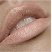 Blushing Bride Premium Nude Lipstick by the Clique