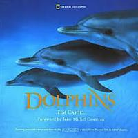 Books About Dolphins