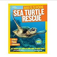 Books About Sea Turtles