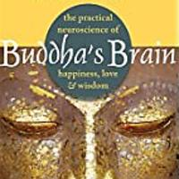 """Buddha's Brain: The Practical Neuroscience of Happiness, Love and Wisdom"""