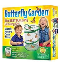 Butterfly Toys