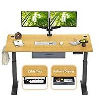 FEZIBO Electric Height Adjustable Standing Desk