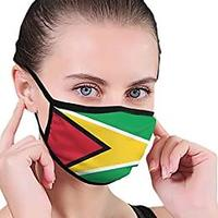 Flag of Guyana Face Mask