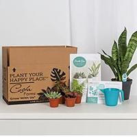Hobby Subscription Boxes