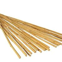 Hydrofarm 6-Foot Natural Bamboo Stakes (Pack of 25)