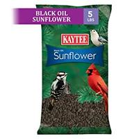 Kaytee Wild Bird Food Black Oil Sunflower  (5 Pounds)