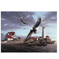 Lighthouse With Eagle