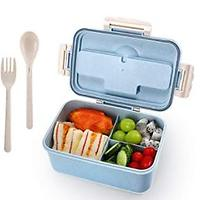 Lunch Boxes With Compartments