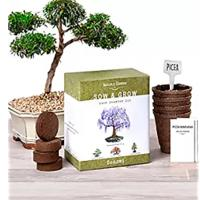 Nature's Blossom Bonsai Garden Seed Starter Kit