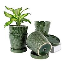 Pots for Plants