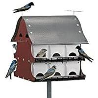 Purple Martin Barn (Bestseller)