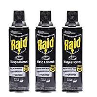 Raid Wasp & Hornet Killer Spray (Pack of 3)
