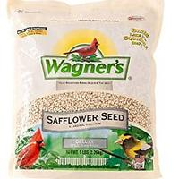 Safflower Seed Wild Bird Food (Bestseller)