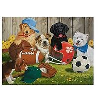 Sports and Dogs