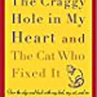 The Craggy Hole in My Heart & the Cat Who Fixed It