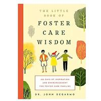 The Little Book of Foster Care Wisdom: 365 Days of Inspiration and Encouragement for Foster Care Families
